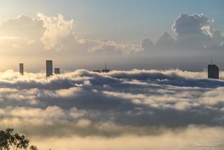 Foggy morning in Brisbane