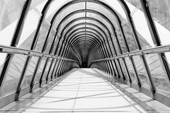Japan Bridge in black and white: part 2 (jbarry5) Tags: japanbridge ladefense paris travelphotography travel geometry abstract blackandwhite monochrome