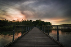 Maasduinen (RigieNL) Tags: limburg sundown bridge nederland netherlands sony sonya6000 sunset clouds zonsondergang natuur nature landschap landscape