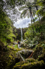 Cannibal Creek Waterfall (Kathrin & Stefan) Tags: cannibalcreek bush cloud creek nature outdoor rock sky waterfall aucklandwaitakere northisland newzealand kathrin