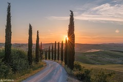 Cypress alley - Baccoleno (Captures.ch) Tags: 2017 baccoleno black blue brown capture clouds cypresses dusk farm gray green hills house italy landscape may nature olives orange red sky spring sunrise sunset trees tuscany valdorcia white wine