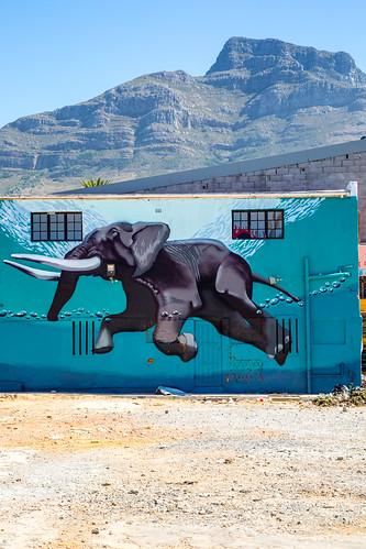 Kaapstad_BasvanOort-181