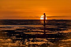 Crosby beach sunset (saile69) Tags: crosby anotherplace anthonygormley beach sefton coast golden northwest seaweed sand sun evening