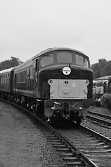Class 44 - D8 Penyghent (gillsfanjohn) Tags: class 44