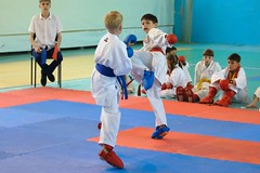 "pervenstvo-asbestovskogo-gorodskogo-okruga-po-karate-2017-6 • <a style=""font-size:0.8em;"" href=""http://www.flickr.com/photos/146591305@N08/34872046261/"" target=""_blank"">View on Flickr</a>"