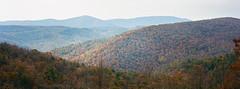 Virginia - Ektar 100 (magnus.joensson) Tags: usa autumn blue ridge parkway october virginia panorama hasselblad xpan 90mm kodak ektar 100 film handheld c41 24x65 visitusa