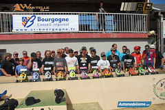 15 coupe ligues 2011