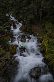 Rainier Nickel Creek