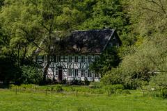 Oelmühle 1