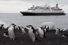 National Geographic Orion at Bailey Head, Antarctica (Scott Ableman) Tags: shetlandislands baileyhead chinstrappenguins chinstrappenguin ship chinstrap penguin nationalgeographicexpeditions lindbladexpeditions nationalgeographicorion antarctica expeditionship