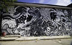 A turtle that rules the world (aerojad) Tags: ossingtonlaneway eos canon 80d dslr 2017 city urban art artinpublicplaces streetart publicart mural murals graffiti vacation travel wanderlust toronto canada vibrant colorful