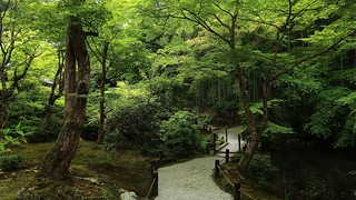 path to zen enlightenment / Kyoto Enkouji Temple