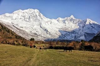 Nepal, Manaslu-Circuit