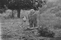 2017-06-04-0002b (forfiv) Tags: film aristaedu100 6x9 214x314 parodinal schneider135235 graflexbabycrowngraphic2x3 handcut wa grandcoulee outdoors monochrome