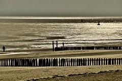 Last daylight.... (rienschrier) Tags: reflexi licht zee water sunset light beach avondlicht vlissingen strand