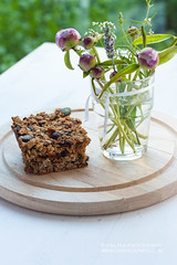 Energy bars homemade (vas_eka) Tags: glass energybars flowers sportfood cooking detox oats pumkinseeds tableware balanceeating homemade proteins diet backgrounds wellness nutrition carbohydrates woodenbackground stylish countryside rustic food menu nutrients meal nourishment chef baked