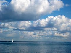 IMG_0600 - virgola (molovate) Tags: mare tafme passeggiata lungomare molovate vela orizzonte panorama nuvole nubi verri vista foroitalico minimale scrrensaver volate canon paesaggio virgola