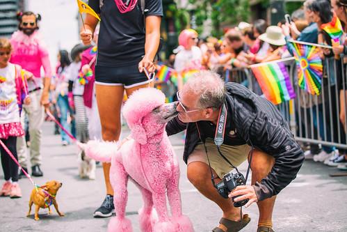 Scott Jordan, SF Pride 2015