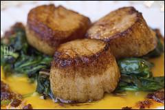 Sauteed Scallops - Bramble House (WordOfMouth) Tags: bramblehouse lialira vashon restaurant scallops chorizo saffron spinach