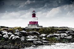 faro y focas, lighthouse and seals (barragan1941) Tags: escocia faros focasseals ligthhouse nubes clouds
