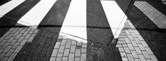 Mixed Media Crosswalk (selyfriday) Tags: selyfriday wwwnassiocomempty nassiocom hasselblad xpan 45mmf4 panorama wide film 35mm analogue 135 believeinfilm r odinal retro80s 1hourstand rolleiretro80s 35ml 25˙c rollei crosswalk street paint pa ved bricks transformation nederland netherland dutch holland zaandam burcht shadow lines