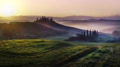 The light at Belvedere (Massetti Fabrizio) Tags: landscape landscapes tuscany toscana tree twilight sunrise sun sunlight sanquirico siena iq180 phaseone rodenstock rural red light yellow
