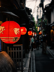 A Stroll through Pontochō (Rekishi no Tabi) Tags: pontocho pontochohanamachi kagai kyoto japan geisha geiko chochin lantern leica