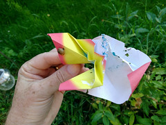 Origami butterfly in the garden - two days later (Brian Ritchie) Tags: liddellroad butterfly garden home origami