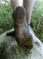 Muddy sole (Barefoot Adventurer) Tags: barefoot barefooting barefoothiking barefeet barefooter barefooted baresoles barfuss toughsoles callousedsoles connected earthsoles earthing earthstainedsoles energy earth naturalsoles naturallytough nature leathersoles anklet arch autumnsoles autumnbarefooting autumn happyfeet hardsoles muddysoles muddyfeet muddy strongfeet stainedsoles