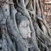 Wat Mahathat with Buddhahead among the tree roots