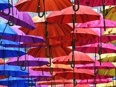Lawrence Street (jacquemart) Tags: lawrencestreet lawrencestreetbath umbrella parasol installation art spectacle
