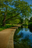 Project 365; #144 (iMalik1) Tags: project days photo day challenge 365 potd walpole park walking work morning walk ealing london landscape blue sky summer pond water feature trees grass bench city life urban landscapes canon eos m3 imalik photography
