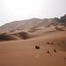 Desert shoot in Dubai