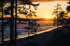 Long Beach Sunset (JeffAmantea) Tags: long beach sunset green point campground camp ground pacific rim national park tofino bc british columbia canada vancouver island west coast ocean trees tree sand water landscape mirrorless sony a7ii nikon nikkor 100mm 28 metabones sonyalpha alpha camping nature natural explore outdoor adventure outside