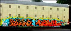killa - legal (timetomakethepasta) Tags: killa legal freight train graffiti art gk autorack aok benching selkirk new york photography
