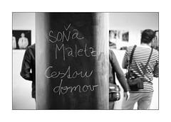 On the exhibition (Istvan Penzes) Tags: leicammonochromtyp246 leicasummilux50mmasph penzes manualfocus rangefinder availablelight handheld bw black white bratislava slovakia soňamaletz
