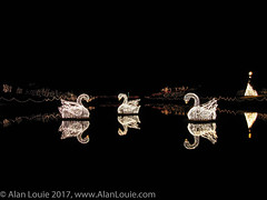 20031220 Bellingrath Xmas 0027 Swans.jpg (Alan Louie - www.alanlouie.com) Tags: bellingrath christmas alabama theodore unitedstates us