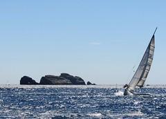 Voilier (morganelafond) Tags: voilier bateau mer sea ship boat sailingboat wind wild vent bretagne europe france eau bleu blue water voile