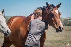 Horse Hugs (Codydownhill) Tags: people family portrait game baseball brother father dad grandma grandpa fourwheeler outdoors longboarding cruise