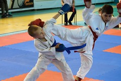 "pervenstvo-asbestovskogo-gorodskogo-okruga-po-karate-2017-8 • <a style=""font-size:0.8em;"" href=""http://www.flickr.com/photos/146591305@N08/34872048041/"" target=""_blank"">View on Flickr</a>"