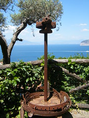 Old olive press in Sorrento, Italy (rossendale2016) Tags: extra oil virgin drawn horse nets steep hillside mountain high naples bay overlooking seascape sea ancient large tight trees berries grove manual screw oxidised iron italy sorrento disused rusty press olive old