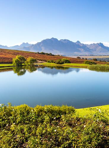 Stellenbosch_BasvanOort-5