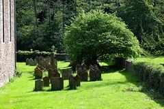 Friedhof  / Country churchyard (Georg Hirsch) Tags: churchyard grave old lost freidhof grab grabmal grün green baum weide trauerweide kirche vergänglichkeit