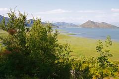 (imke.stahlmann) Tags: montenegro lakeskadar skadar skutarisee