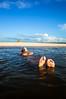 Santarem-17 (Bruno Laria) Tags: am amazonas américadosul br bra brasil estadodoamazonas amazonia ambiente humano humanos luademel pessoa pessoas rio serhumano sereshumanos social sociedade tapajos água