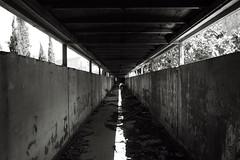 tutto in ordine - everything in order (francesco melchionda) Tags: kupari blackwhite light shadows line decay decadence ruins explore abandoned urbex urbanexploration