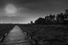 Torfmoor-1 (FSR Photography) Tags: moor torfmoor travel canon400d canon canondslr clouds wolken bw blackandwhite blackwhite sw schwarzweis schwarzweiss monochrome monochrom fsr fsrphotography