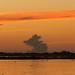 Finish | Pantanal - Brazil