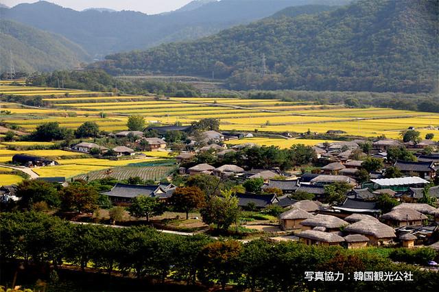 世界遺産の村、安東河回村日帰りツアー(海外の村・世界の村を訪問できるオプショナルツアー)