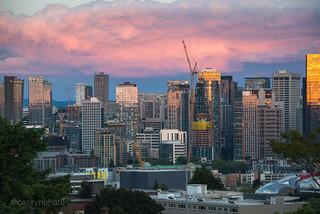 Casey-Herd-8532 - Seattle, USA